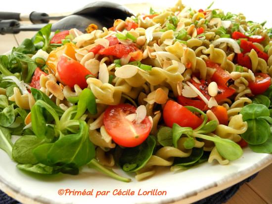 salade_pates_legumineuses