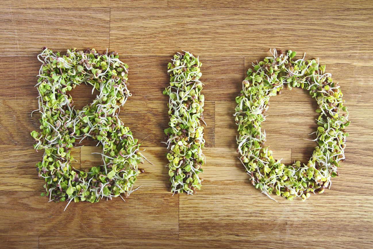 Bio word made of green organic sprouts