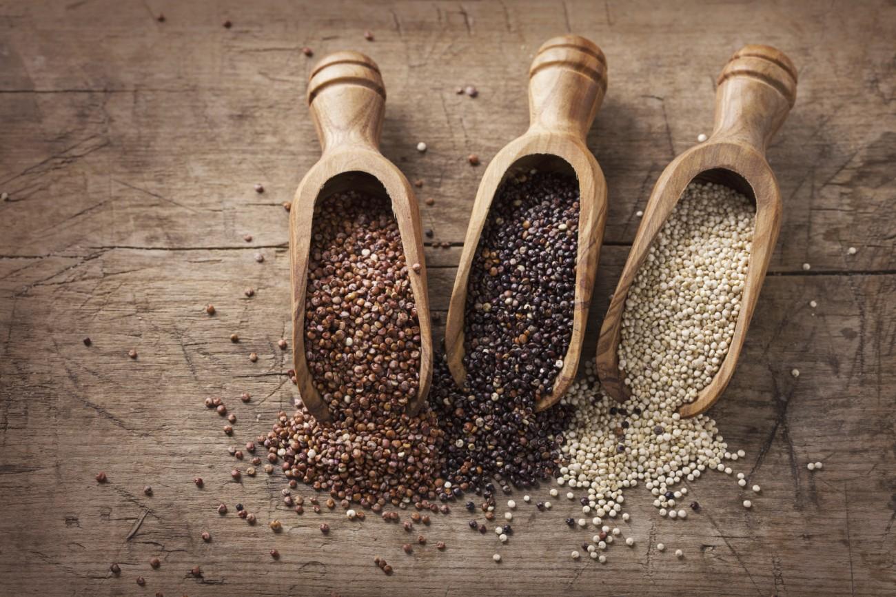 Tout-savoir-sur-le-roi-quinoa.jpg