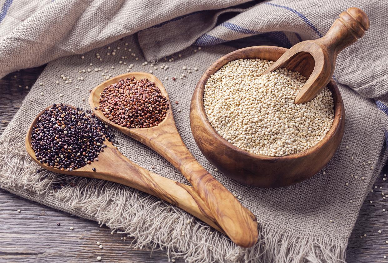 Le-quinoa-Primeal-de-Bolivie-un-grain-bio-protege.jpg