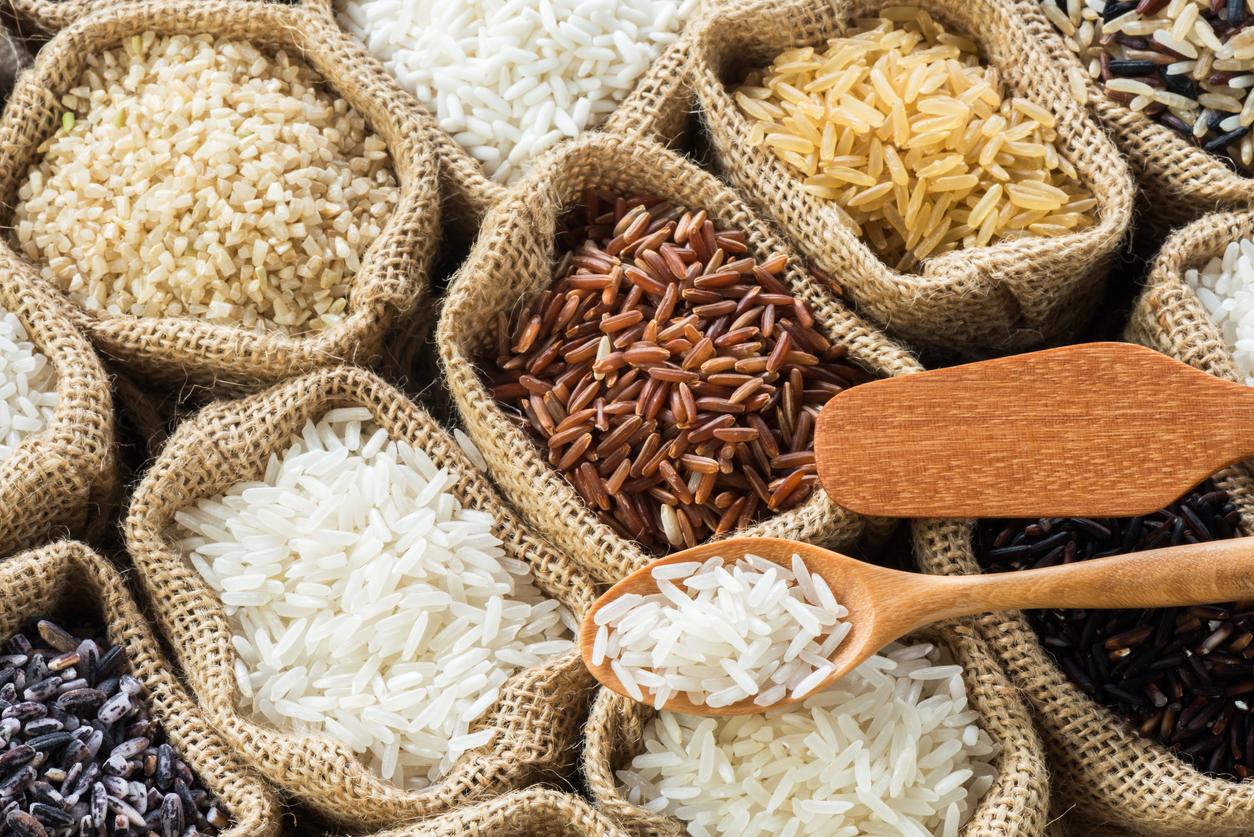 Tout-nouveau-tout-riz-les-nouveautes-Primeal.jpg